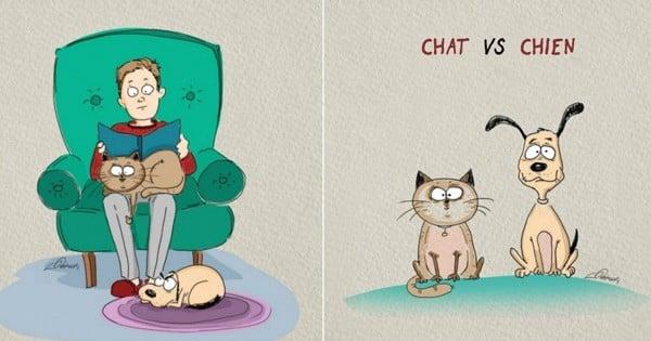 6 illustrations qui montrent les différences entre chat et chien… C'est tellement ça et très drôle !