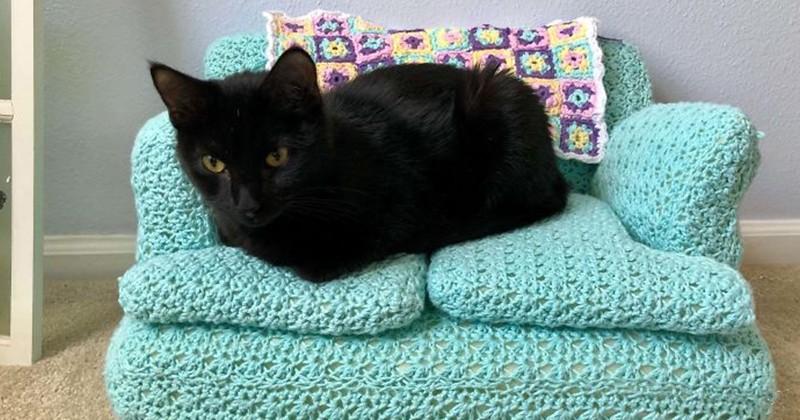 Durant leur temps libre, ils réalisent de petits canapés en crochet pour leurs chats