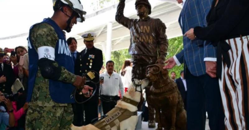 Ce chien a reçu une statue à son effigie pour avoir sauvé 12 personnes pendant un tremblement de terre
