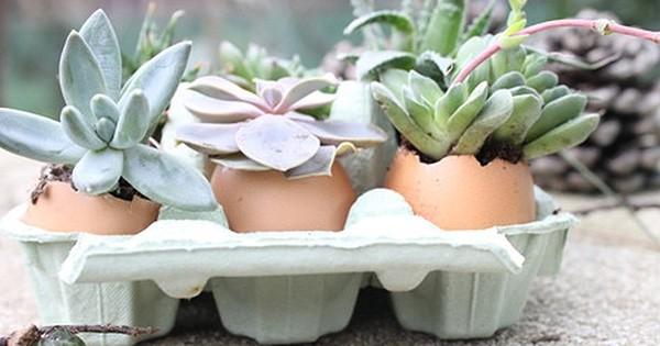 9 objets auxquels vous n'auriez jamais pensé... pour agrémenter votre jardin !