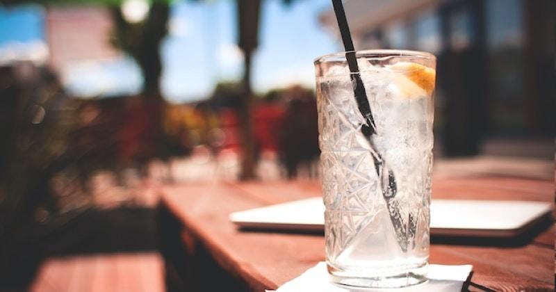 Job de rêve : Gin Company cherche des testeurs pour goûter son gin !