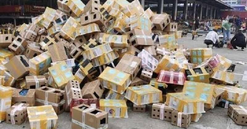 Enfermés dans des colis, 5 000 animaux sont morts de faim et de déshydratation en Chine
