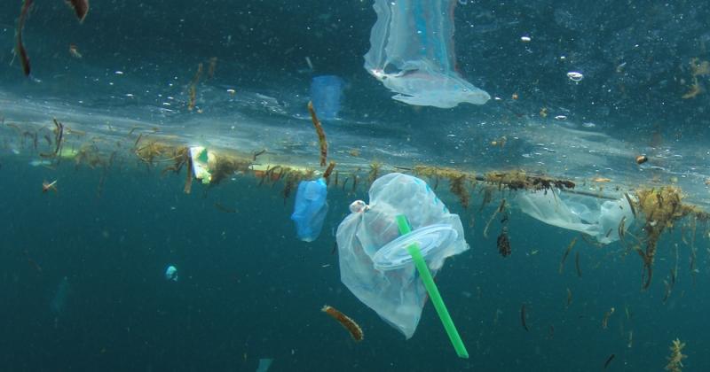 Pailles, cotons-tiges et touillettes en plastique seront bannis au Royaume-Uni à partir d'avril 2020