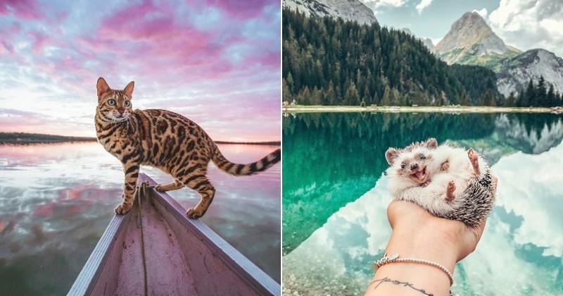 15 animaux à suivre absolument sur Instagram