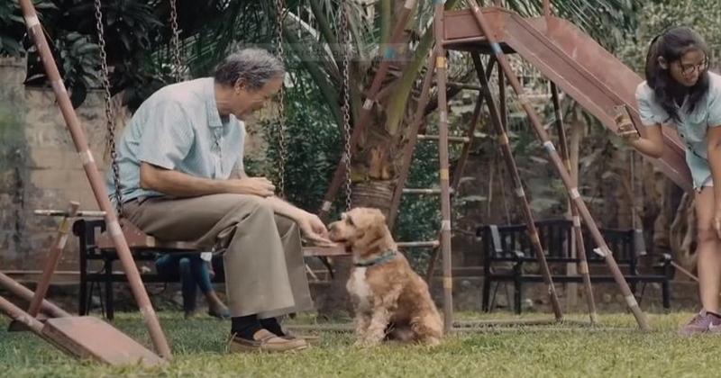 Dans cette publicité, un homme fait preuve d'un grand cœur en accueillant un chien errant