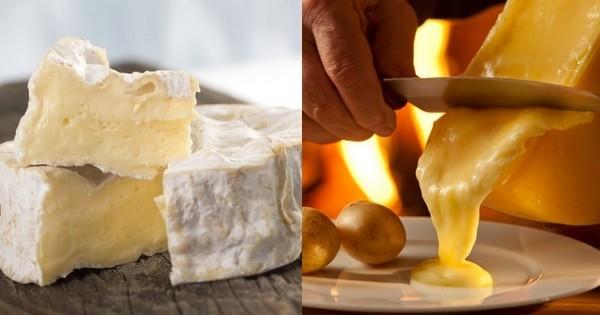 D'après plusieurs études sérieuses, consommer du fromage serait bon pour votre santé
