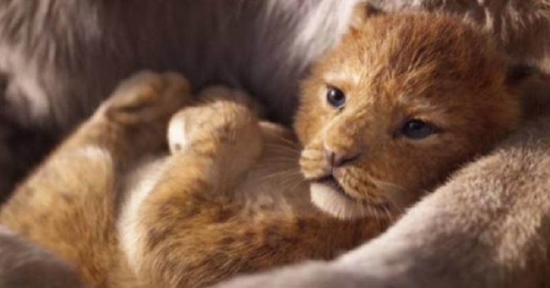 Le Roi Lion : Disney dévoile la date de sortie et une nouvelle bande-annonce du film