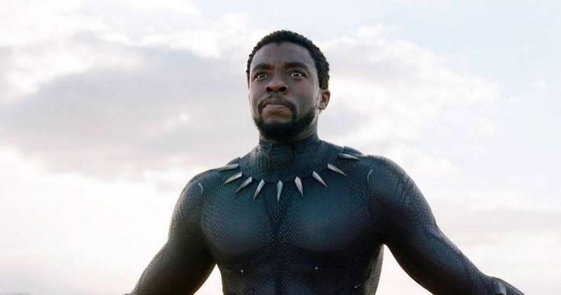 Chadwick Boseman : « Black Panther » diffusé pour la première fois en clair sur TF1