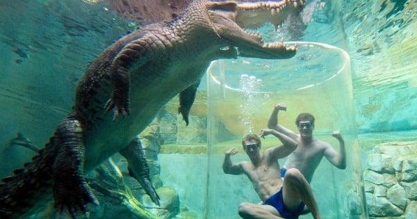 Les 9 attractions touristiques les plus extrêmes du monde !