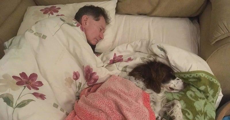 Chaque nuit, cette famille se relaie pour dormir avec leur chien handicapé qui ne peut plus se déplacer
