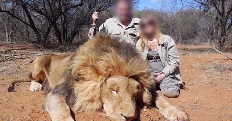 Safarifotoserie met dode beesten leiden tot ontslag Franse supermarktbazen
