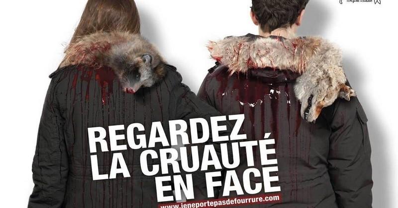 Fondation Bardot : une campagne coup de poing pour dire stop à la fourrure animale