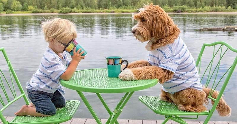 Ce petit garçon et son chien font tout comme des frères