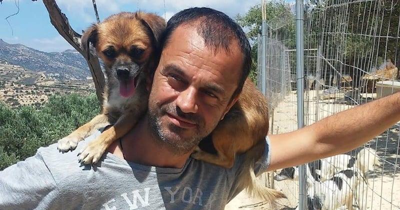 Takis Shelter, le refuge créé par un ancien dentiste qui a tout quitté pour sauver les animaux abandonnés