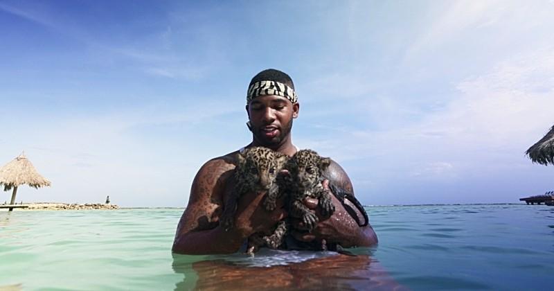 Honduras: Roatán, l'île paradisiaque où l'on peut nager avec des jaguars