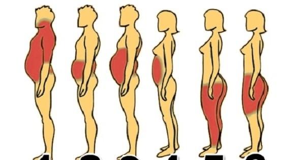Voilà comment perdre du poids de manière efficace, en fonction de votre morphologie