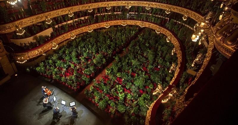Plus de 2000 plantes ont servi de public lors d'un concert pour la réouverture de l'opéra de Barcelone