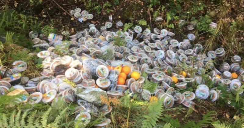 Des kilos d'invendus de Leclerc et Carrefour retrouvés dans une forêt du Nord