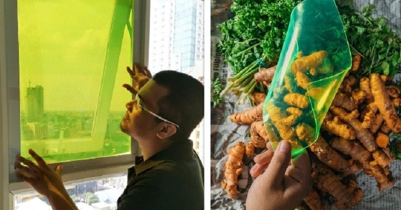 Un étudiant a créé un panneau solaire à partir de particules présentes dans les déchets alimentaires