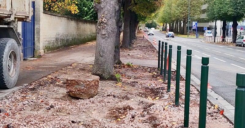 Caen : la mairie débitume les pieds des arbres pour les laisser respirer et créer d'immenses espaces verts