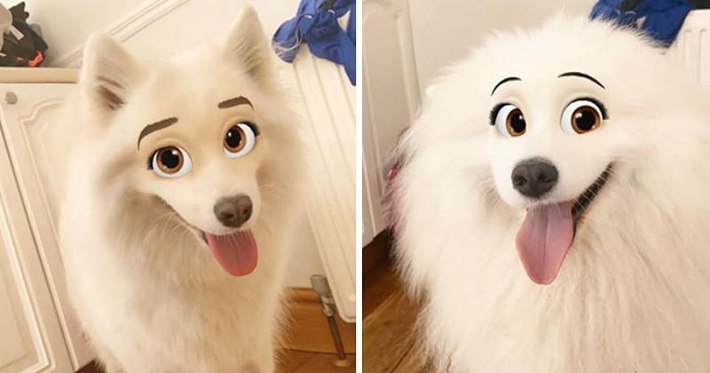 Snapchat sort un filtre qui transforme votre chien en personnage de Disney