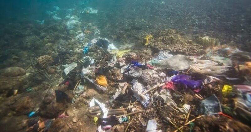 230 000 tonnes de déchets plastiques jetées chaque année dans la mer Méditerranée
