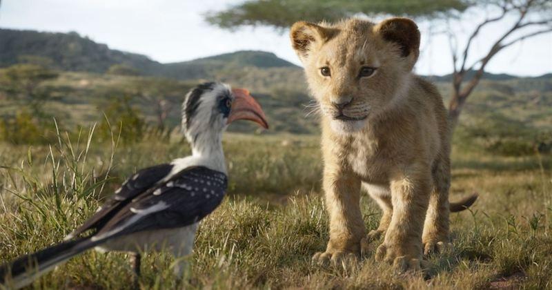 Disney : le remake du « Roi Lion » aura le droit à une suite