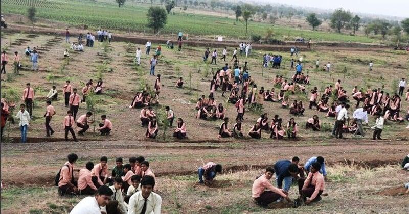 En Inde, un État a battu le record de reforestation avec 66 millions d'arbres plantés en seulement 12 heures