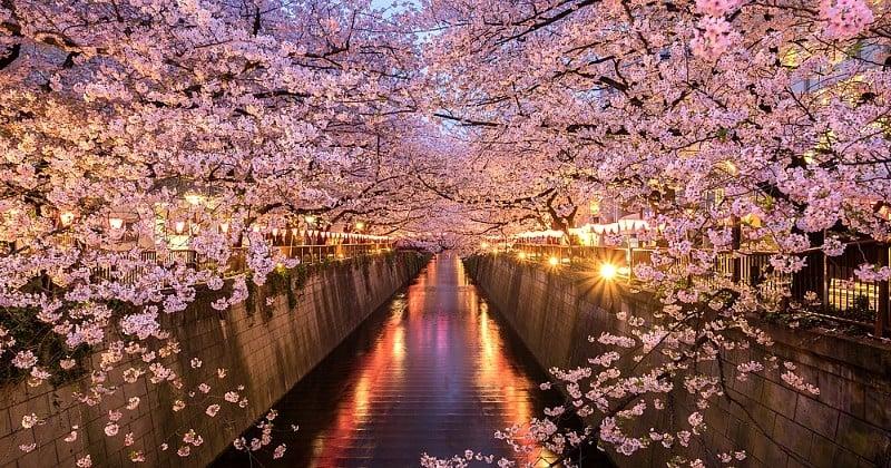 10 lieux à ne rater sous aucun prétexte si vous êtes de passage au Japon !