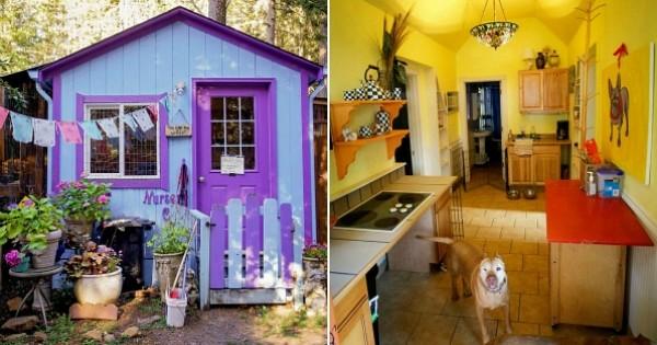Elle construit un refuge où les chiens ont leur propre maison, une forêt en guise de terrain de jeu et ne sont pas enfermés !