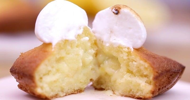 madeleine citron meringuée