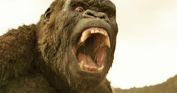 « Kong : Skull Island » : découvrez les 21 anecdotes les plus folles sur l'histoire du gorille le plus impressionnant du cinéma