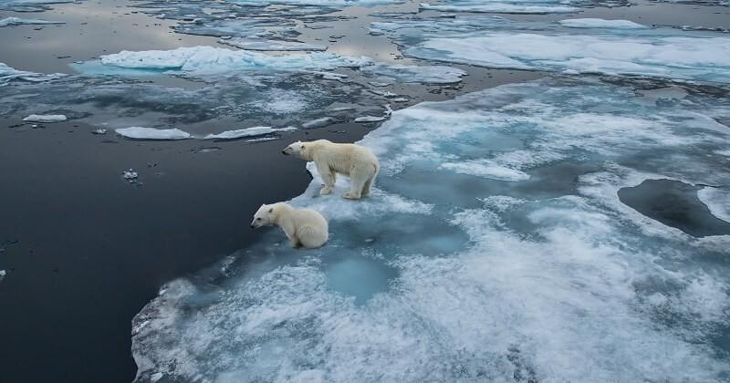En moins de 30 ans, la Terre a perdu 28 000 milliards de tonnes de glace