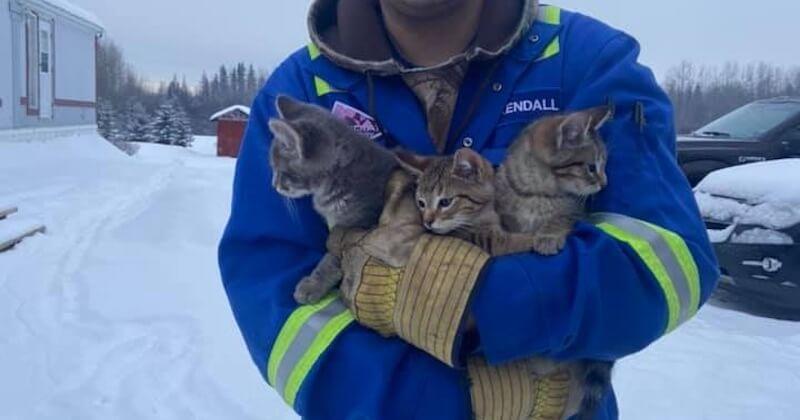 La vidéo d'un Canadien, sauvant trois chatons emprisonnés dans la glace, émeut la toile
